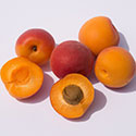 Six apricots pictured with one apricot's pitt exposed.