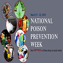 Collage of poison hazards commonly found in the home.